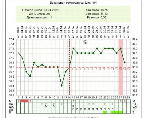 квартиру посуточно базальная температура 36 8 при беременности хиссаи нут Какие