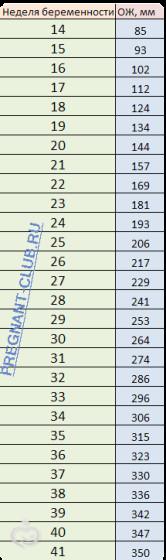 Размер живота по неделям при беременности