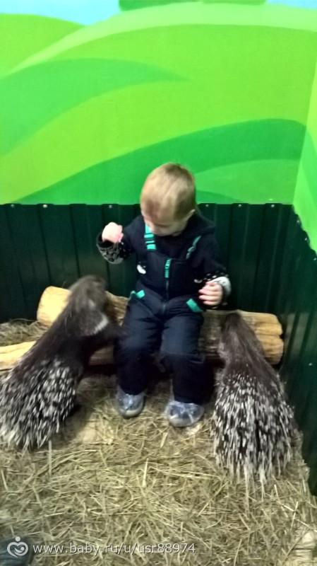 посетили мы котнтактный зоопарк