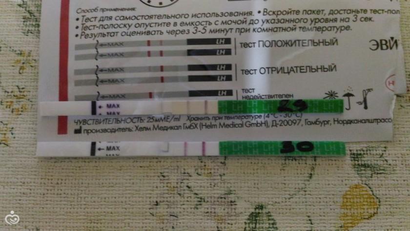 Готовые тесты для микробиологии - 3m dipslides.