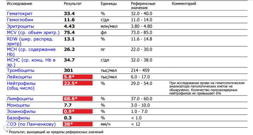 Бактерии в общем анализе крови Справка 095 Большой Чудов переулок