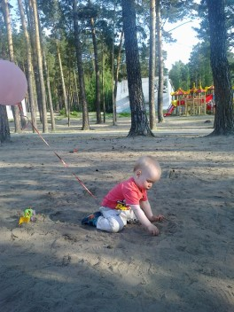 Бор и песок - чудесный летний денек :-)
